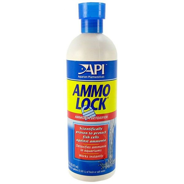 Ammo-Lock 2 to Detoxify Ammonia / Size (8 ounces) Best Price