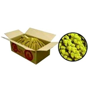 Millet Spray for Small Pet Birds - 5 lb Best Price