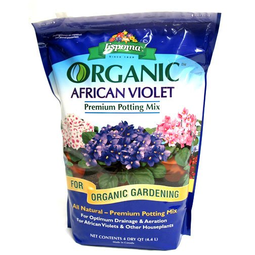 Organic African Violet Mix - 4 qt. Best Price