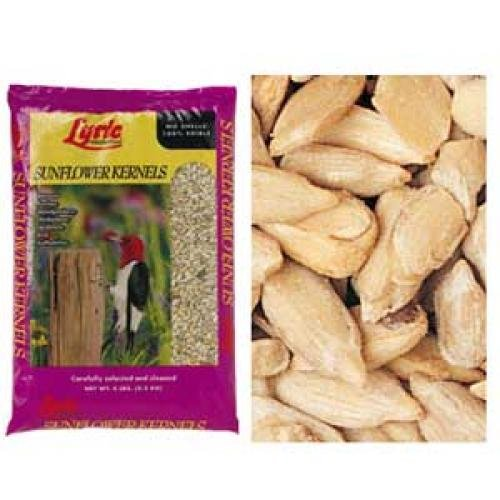 Lyric Sunflower Kernals for Wild Birds  (Case of 10) Best Price