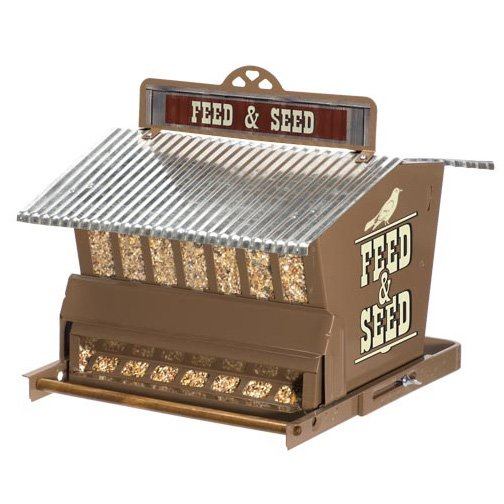 Seed and Feed Absolute Feeder Best Price