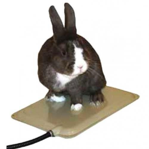 Small Animal Heated Pad
