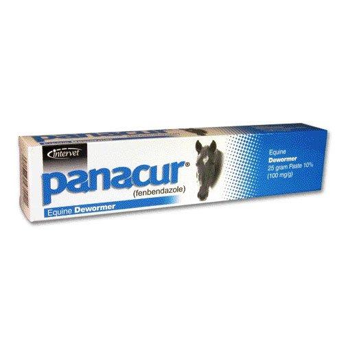 Panacur Paste Equine Dewormer - 25 gram Best Price