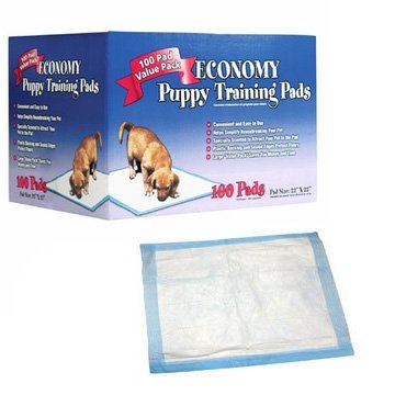 Economy Puppy Training Pads - 22x22 inches / 100 pk Best Price