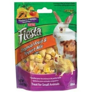 Fiesta Yogurt Small Pet 3.5 oz. Best Price