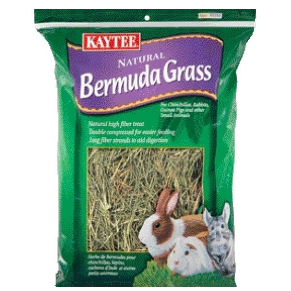 Natural Bermuda Grass for Rabbits/Small Pets 16 oz. Best Price