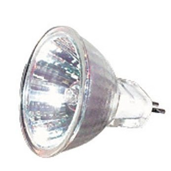 Egglite replacement bulbs - 10 Watt Best Price