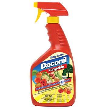 Daconil Fungicide / Size (Quart - RTU) Best Price