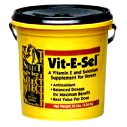 Vit-e-sel Powder for Horses - 10 lbs Best Price