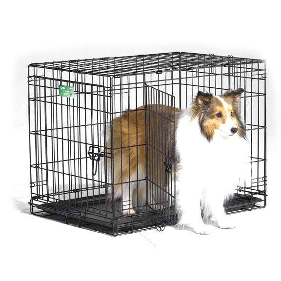 Icrate Double Door Dog Crate / Size 30 In.