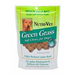 Green Grass Soft Chews for Dogs - 5.3 oz. Best Price