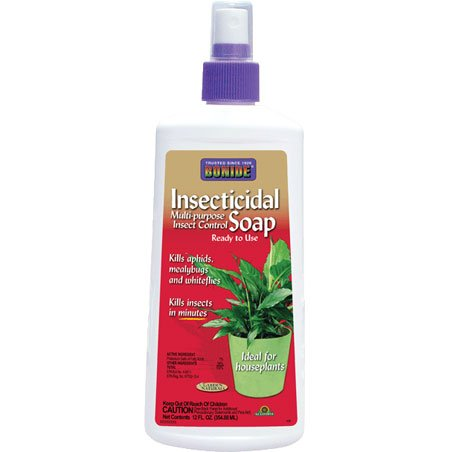 Insecticidal Soap Insect Spray 12 oz Best Price
