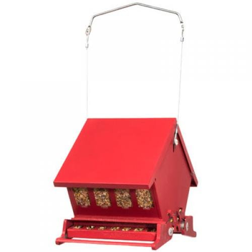 Mini Absolute 2 Bird Feeder Best Price