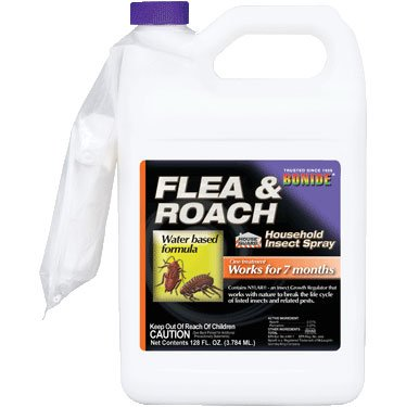 Flea and Roach Spray - 1 gallon Best Price