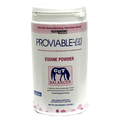 Proviable EQ Powder for Horses - 600 grams Best Price