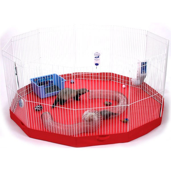Playpen Floor Mat for Small Pets Best Price