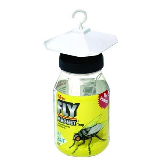 Fly Magnet With Bait (Case of 12) Best Price