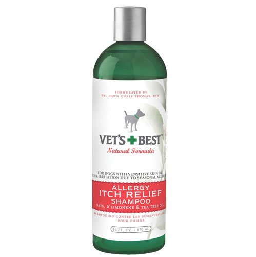 Allergy and Itch Relief Shampoo 16 oz. Best Price