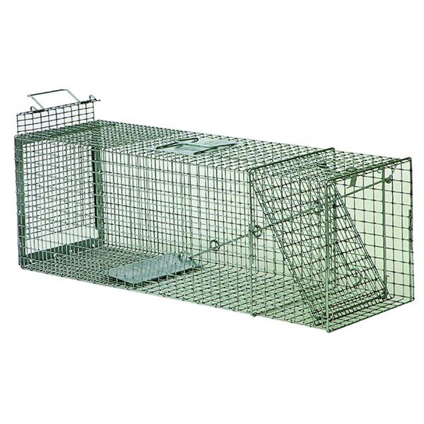 Opossum Trap - Rear Release 36 inches Best Price