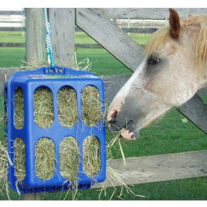Heath E-z Hay Feeder - Blue Best Price