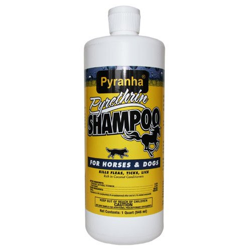 Pyrethrin Shampoo for Horses or Dogs 32 oz. Best Price