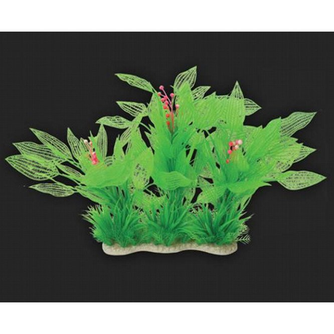 Tropical Elements Madagascar Lace - Green 10 in. Best Price