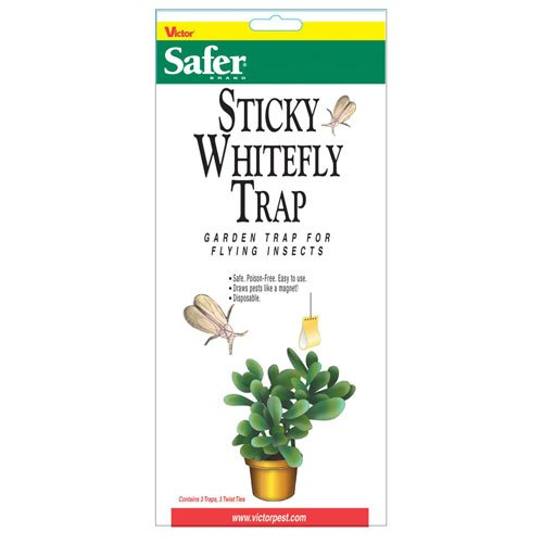 Whitefly Disposable Trap 3 pack (Case of 24) Best Price