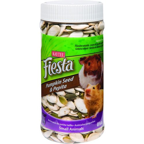 Fiesta Pumpkin Pepita Treat Jar for Small Pets - 6.5 oz. Best Price