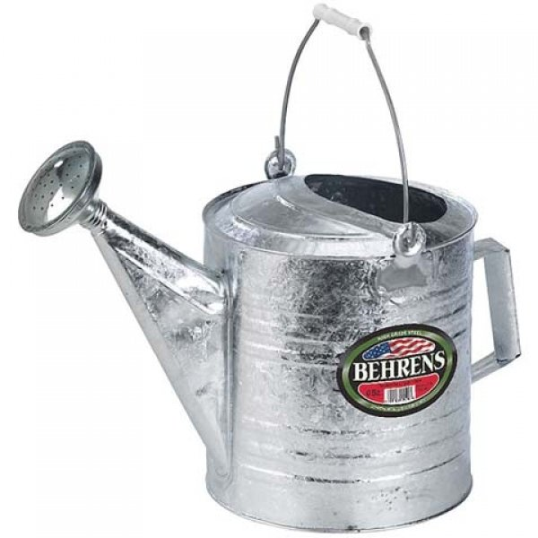 Galvanized Hot Dipped Watering Can / Size (10 Quart) Best Price