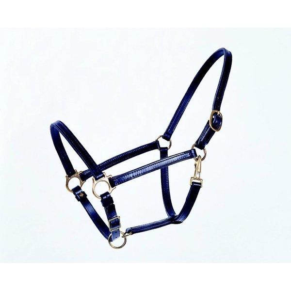Leather Horse Halter / Size (Horse / Black) Best Price