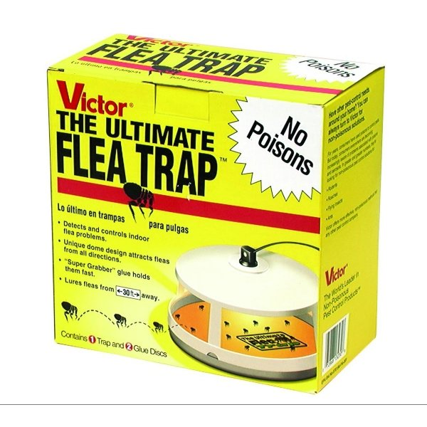 Ultimate Flea Trap Victor