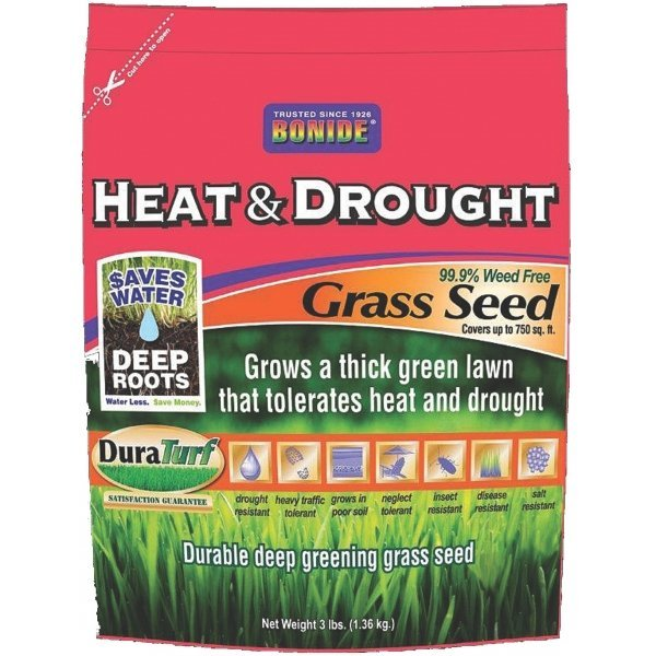Heat and Drought Grass Seed / Size (3 lbs) Best Price