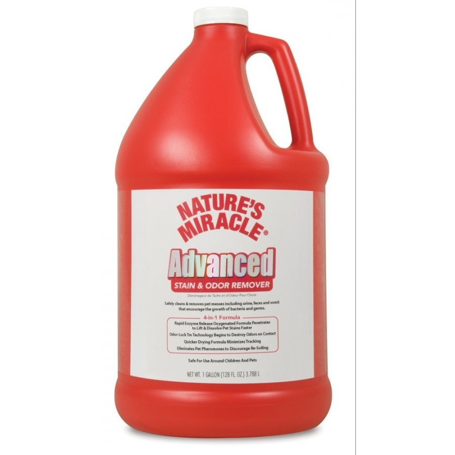 Advanced Stain Odor Formula / Size Gallon