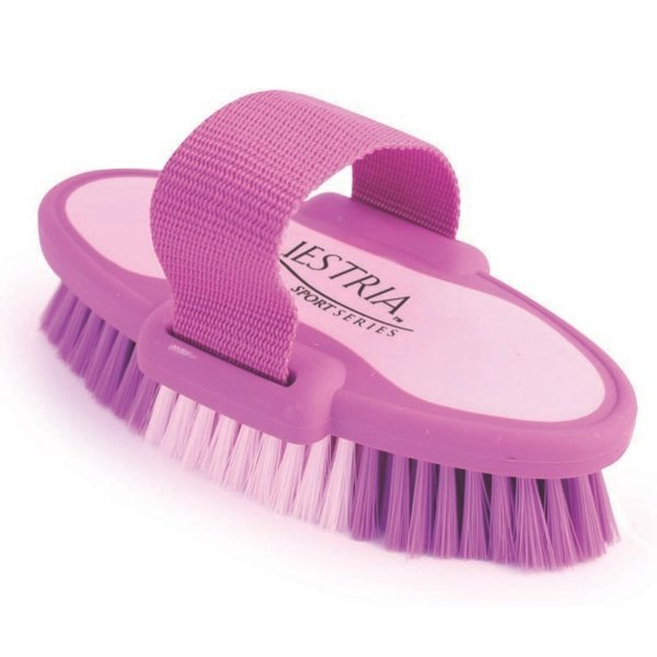 Equestria Sport Oval Body Brush for Horses / Type (Purple/Small) Best Price