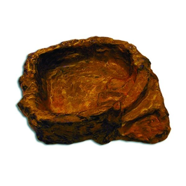 Reptile Terraced Dish / Size (Medium) Best Price