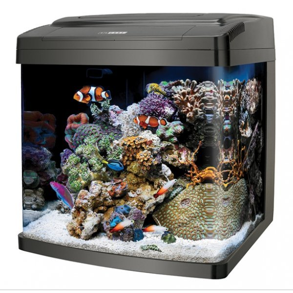 Coralife Biocube 14 Gallon