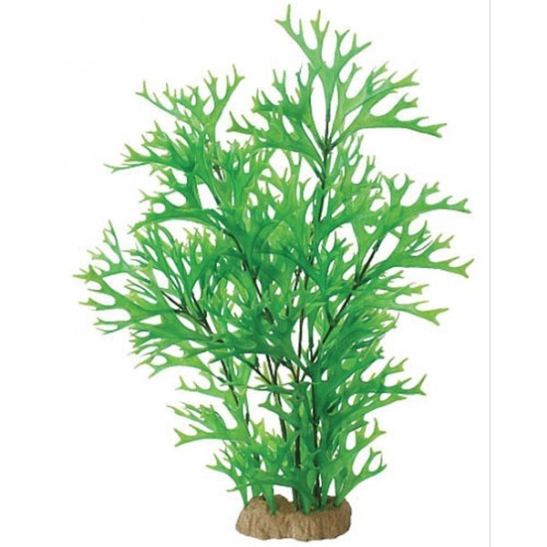 Natural Elements Antler Fern - 20-22 in. Best Price