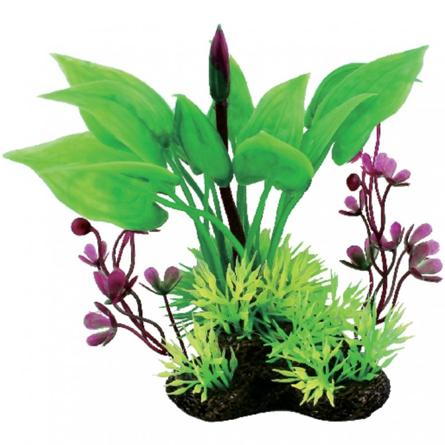 Tropical Elements Arum/Marsilea Combination - Green / 5 in. Best Price