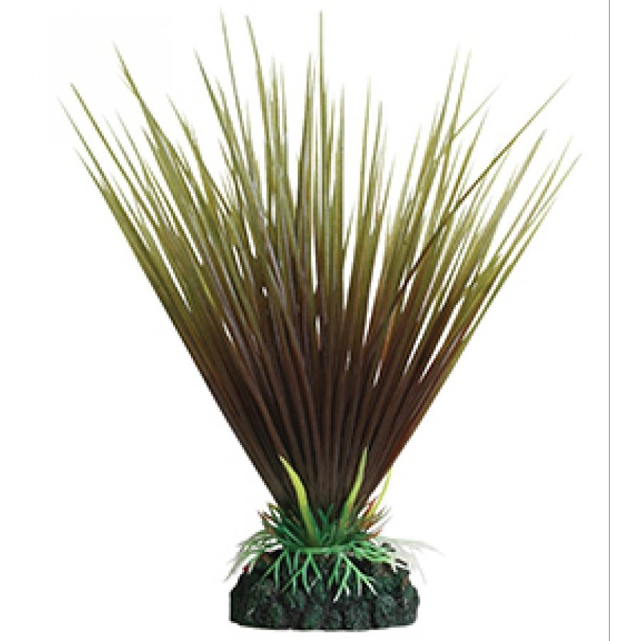 Tropical Elements Hairgrass - Crimson / 8 in. Best Price