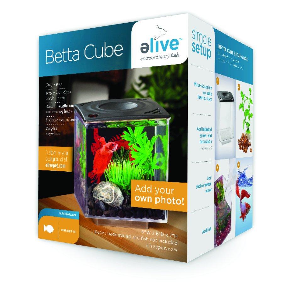 Betta Cube Aquarium Supplies Gregrobert