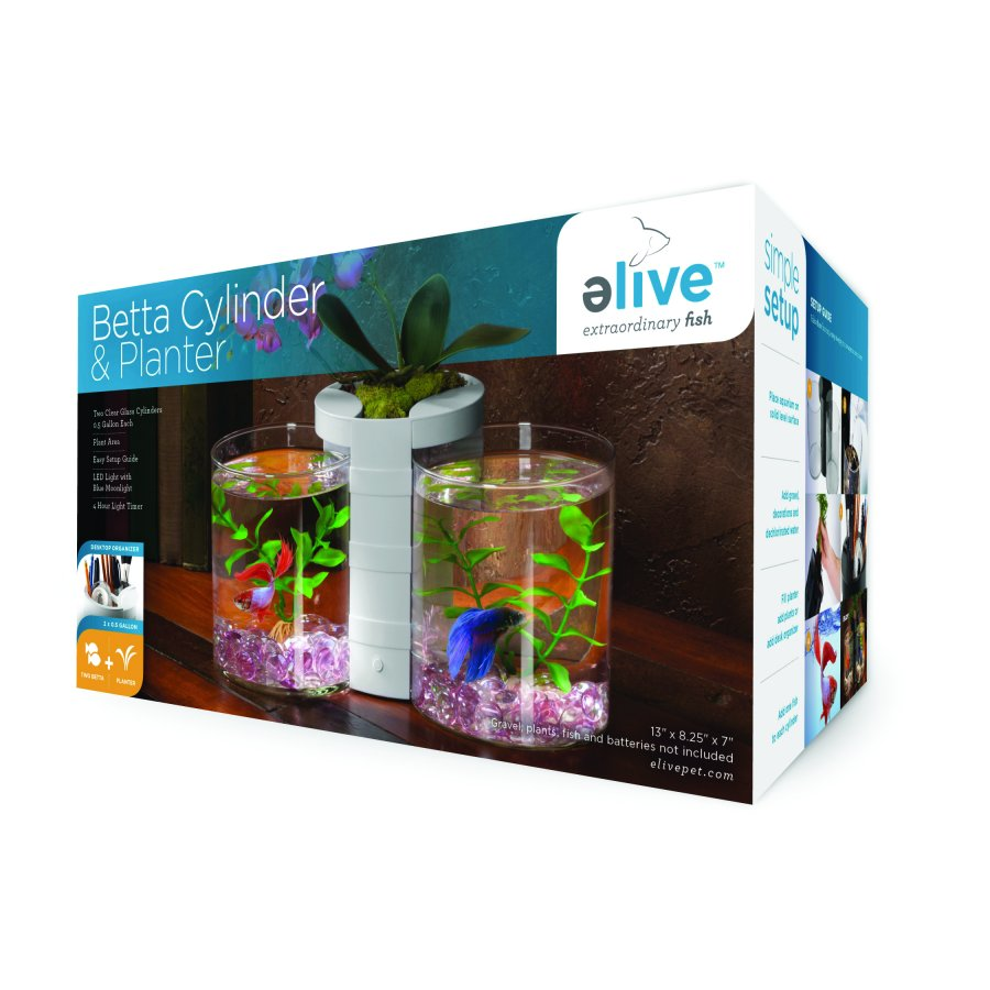 Betta Cylinder And Planter