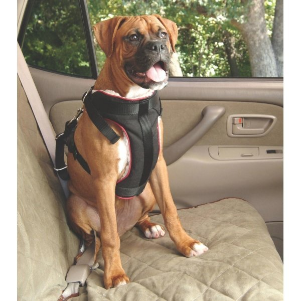 Pet Vehicle Safety Harness / Size (Large) Best Price