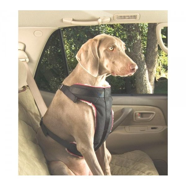 Pet Vehicle Safety Harness / Size (XLarge) Best Price