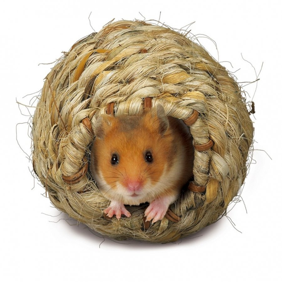 Roll A Nest Grassy Nest For Small Animals