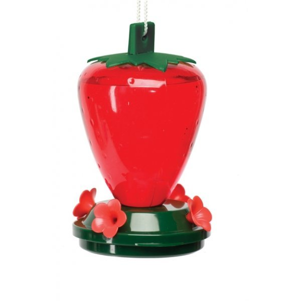 Strawberry Hummingbird Feeder 24 oz. / 4 feeding ports Best Price