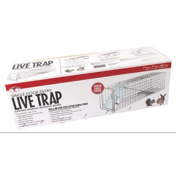 Single Door Live Trap / Size (24 X 7 X 7 in.) Best Price
