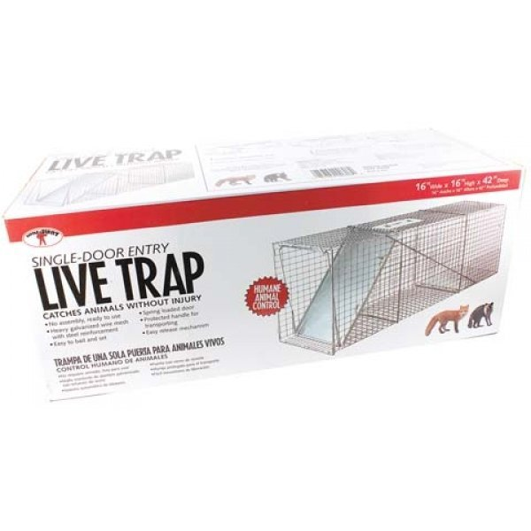 Single Door Live Trap / Size (42 X 16 X 16 in.) Best Price