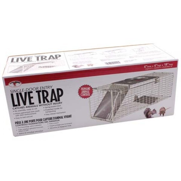 Single Door Live Trap for Squirrels / Rats - 18 X 6 X 6 Best Price
