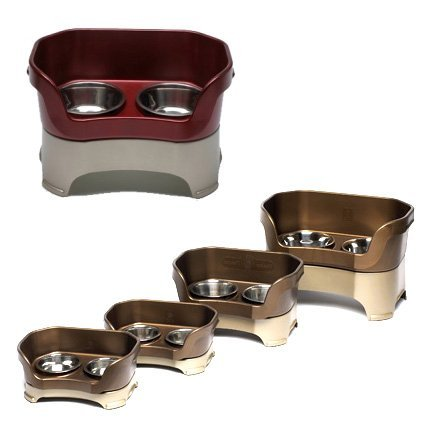 Neater Feeder Elevated Dog Bowls