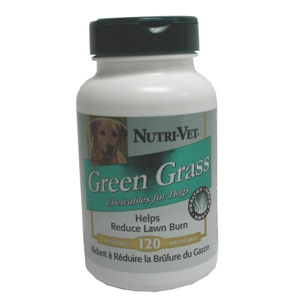 Grass Guard Liver Chewables for Dogs / Size (120 Count) Best Price